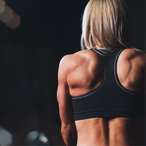 Female muscles back - 4 Different Types of Pharmacology Related To the Musculoskeletal System